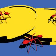 Facebook Sweetens Deal for Hackers to Catch Security Bugs